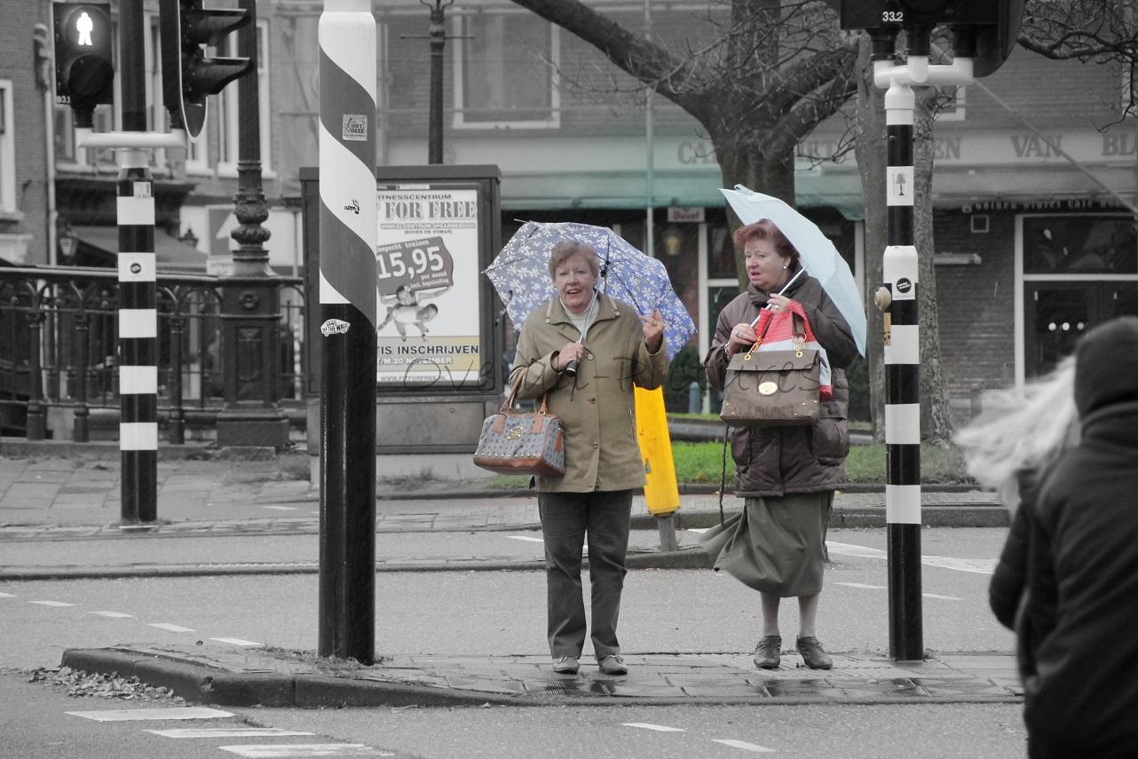 Ladies at stoplight with umbrella