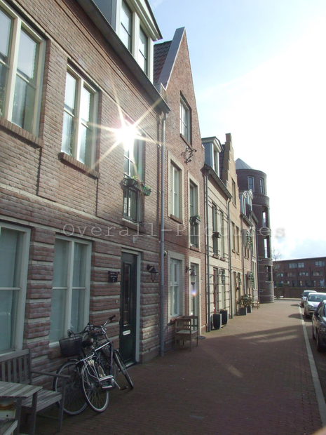 Broekpolder Beverwijk 20-2-2012