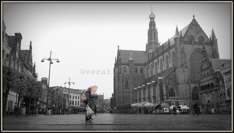 Haarlem Grote kerk 14-11-2013 (12)fzwHlgrand-BorderMaker