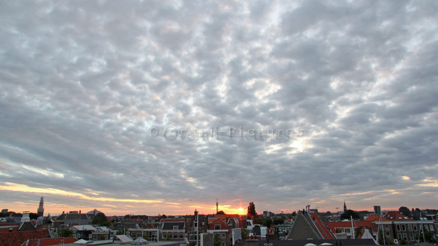 Haarlem 12-8-2013