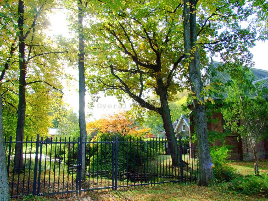 Utrecht Landschappen 14-10-2009